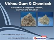 Vishnu Gum & Chemicals, Gujarat India