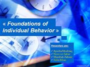 foundations of individual behavior2