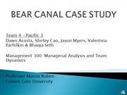 MGMT 300.C1 - Team 4 Bear Canal Case Study