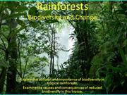 Rainforests biodiversity loss