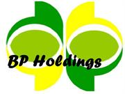 BP Holdings - Another new role for BP's Mike Utsler