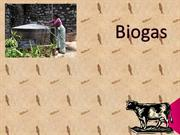 Fixed Dome Type Biogas1