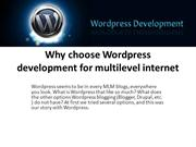 Why choose Wordpress development for multilevel internet