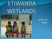 ETIWANDA WETLANDS-  an interesting place to visit