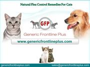 Natural flea control remedies for cats