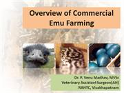 Overview of commercial emu farming