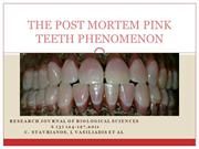 postmortem pink tooth