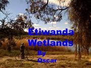 Etiwanda Wetlands; very important for Mildura by Oscar