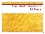 Extinction of Molluscs