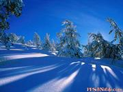 Winter_Wonderland (1)