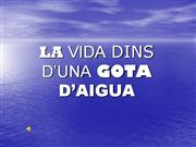 LA VIDA DINS DUNA GOTA DAIGUA jo