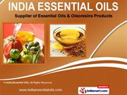 Essential Oils by India Essential Oils, Delhi