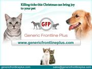 Killing ticks this Christmas can bring joy to your pet-