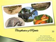 Classification of reptiles