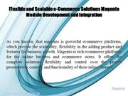 Flexible e-Commerce Solutions Magento Module Development