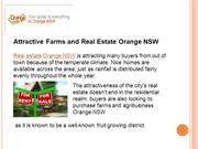 Farms and Agribusiness Orange | Real Estate Orange NSW | Orange NSW