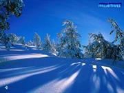 Winter_Wonderland