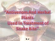"""Antivenom And Herbal Plants Used In Treatment of Snake Bite"""