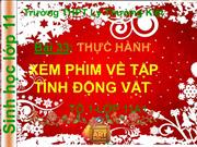 Bi 33:Thc hnh xem phim v tp tnh ng vt_CHRISTMAS VERSION