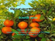 Status of citrus decline in India