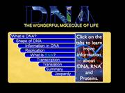 DNA & RNA Basics