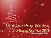 Merry Christmas 2012- Happy New Year 2013