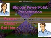 Power Point Presentation Reproduction in Animal