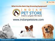 What Are the Basic Dog Grooming Equipment