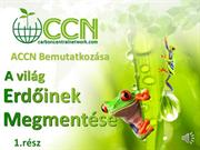 (Hungarian Part 1) CCN Business Presentation