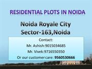 RESIDENTIAL PLOTS IN NOIDA ( Noida RoyaleCity )