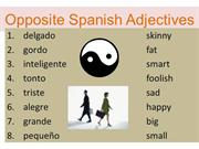 Opposite Spanish Adjectives