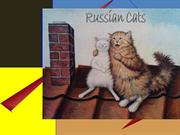 516-Russian cats 3