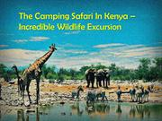 The Camping Safari In Kenya – Incredible Wildlife Excursion