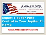 Pest Control Jupiter Expert Tips