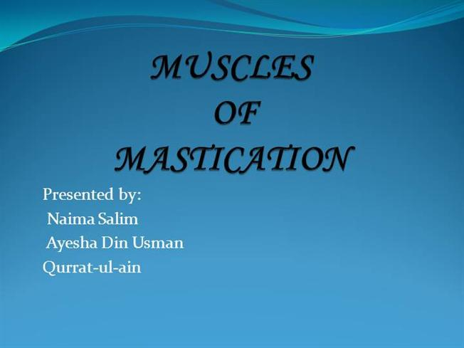 Muscles Of Mastication Authorstream