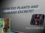 excretion in plants and humans (class X)