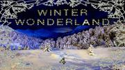 winter_wonderland_4 - vu(1)