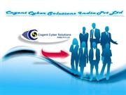 Cogent Cyber Solutions-Web Design in Chennai, Seo in Chennai