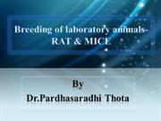 breeding of lab animals rat mice