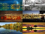 World-reflections