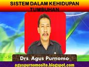 Sistem Dalam Kehidupan Tumbuhan