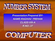 Number system Computer