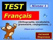 99890 test-francais-niveau-1- by Patagon