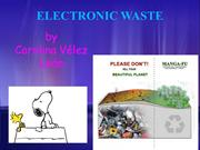 Carolina Velez Electronic Waste