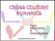 CROSS CULTURE DYNAMIC