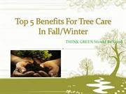 Top 5 Benefits For Tree Care In Fall or winter