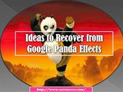 Ideas to Recover From Google Panda Effects