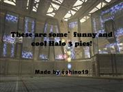 Halo 3 Funny Pics