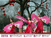 2013 Chinese Lunar New Year
