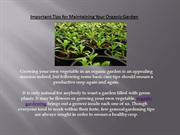 Important Tips for Maintaining Your Organic Garden